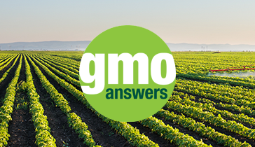BTN GMO Answers